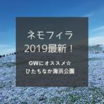 【4月20日最新】2019 海浜公園ネモフィラ&チューリップ 見頃情報!いつまで楽しめる?園内混雑や駐車場は?GWにオススメ!